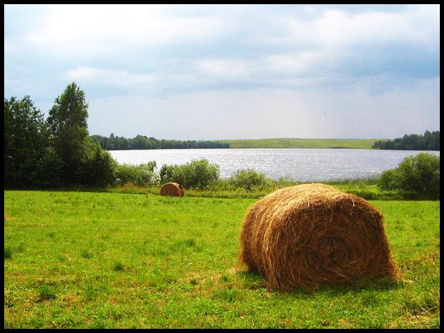 Картинки на форум с началом лета